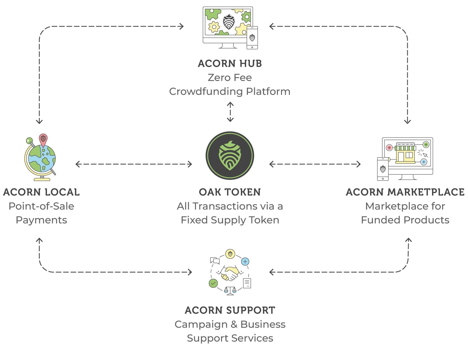 acorn ecosystem